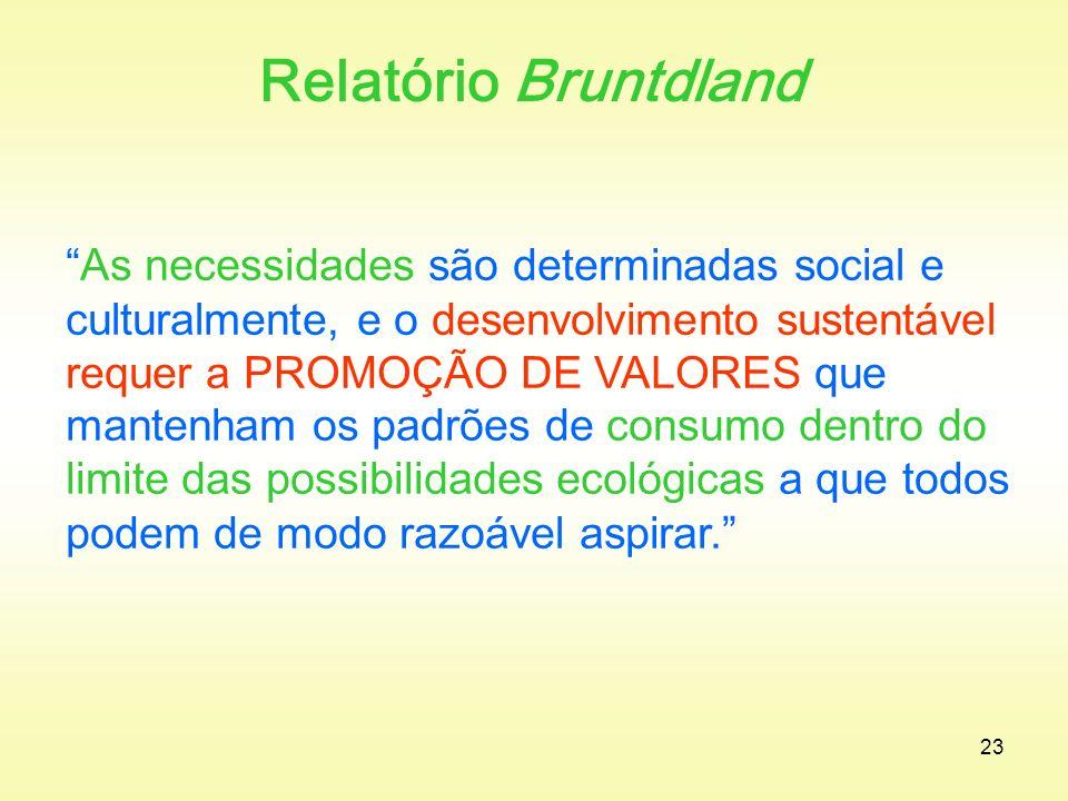 Relatório Bruntdland