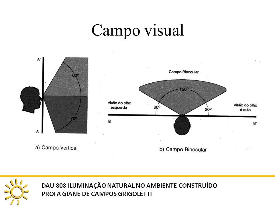 Campo visual DAU 808 ILUMINAÇÃO NATURAL NO AMBIENTE CONSTRUÍDO