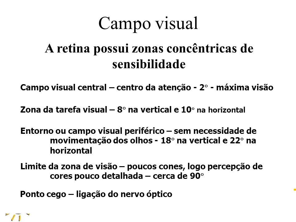 A retina possui zonas concêntricas de sensibilidade