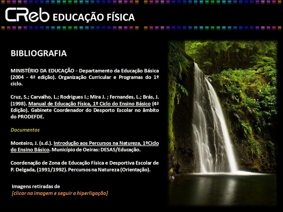 BIBLIOGRAFIA MINISTÉRIO DA EDUCAÇÃO - Departamento da Educação Básica (2004 - 4ª edição). Organização Curricular e Programas do 1º ciclo.