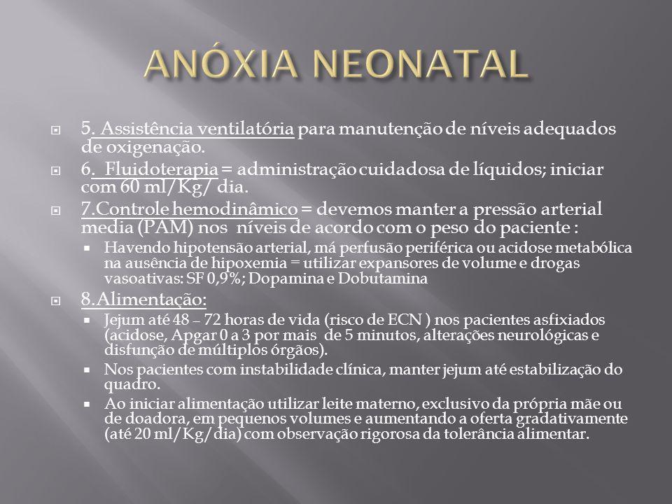 ANÓXIA NEONATAL 5. Assistência ventilatória para manutenção de níveis adequados de oxigenação.