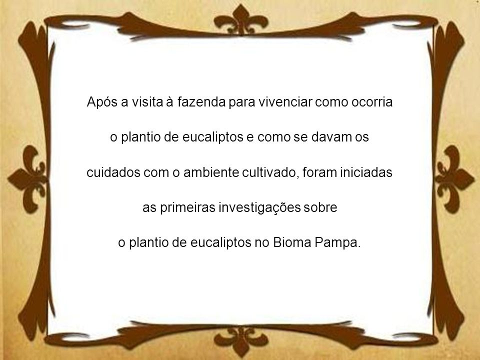 Após a visita à fazenda para vivenciar como ocorria o plantio de eucaliptos e como se davam os cuidados com o ambiente cultivado, foram iniciadas as primeiras investigações sobre o plantio de eucaliptos no Bioma Pampa.