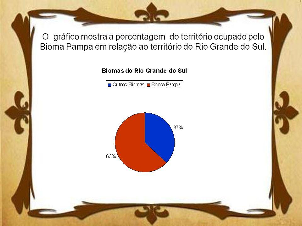 O gráfico mostra a porcentagem do território ocupado pelo Bioma Pampa em relação ao território do Rio Grande do Sul.