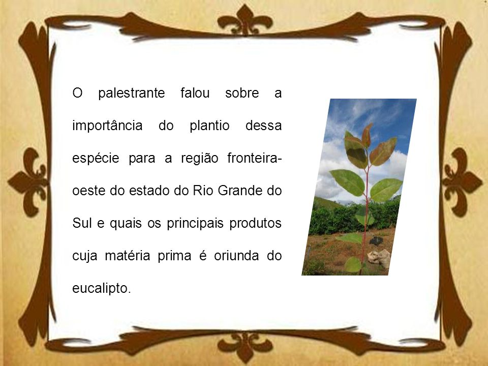 O palestrante falou sobre a importância do plantio dessa espécie para a região fronteira-oeste do estado do Rio Grande do Sul e quais os principais produtos cuja matéria prima é oriunda do eucalipto.