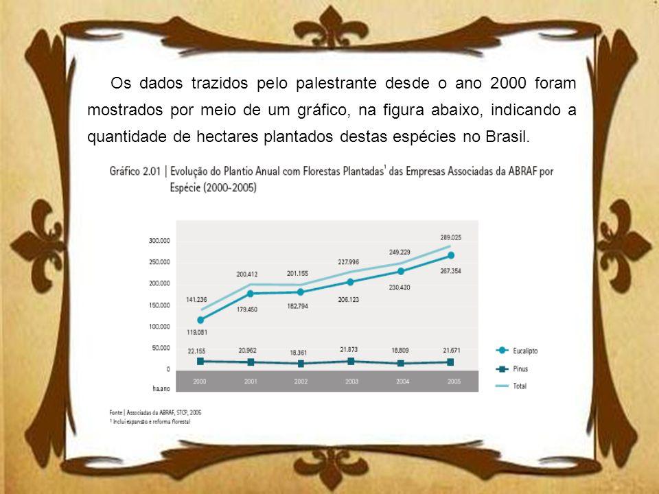 Os dados trazidos pelo palestrante desde o ano 2000 foram mostrados por meio de um gráfico, na figura abaixo, indicando a quantidade de hectares plantados destas espécies no Brasil.