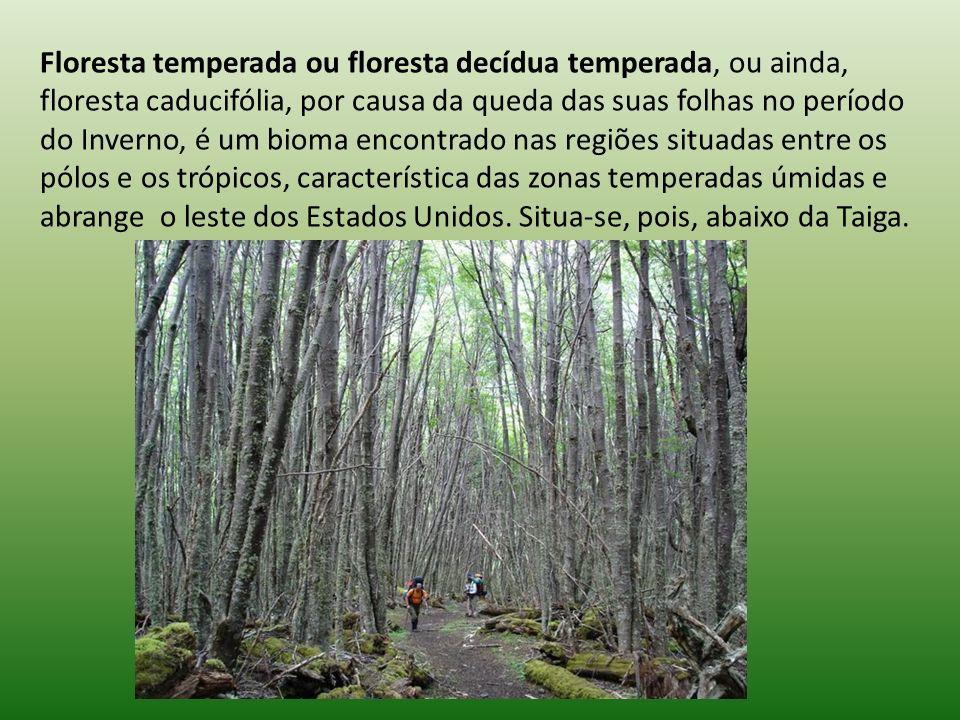 Floresta temperada ou floresta decídua temperada, ou ainda, floresta caducifólia, por causa da queda das suas folhas no período do Inverno, é um bioma encontrado nas regiões situadas entre os pólos e os trópicos, característica das zonas temperadas úmidas e abrange o leste dos Estados Unidos.