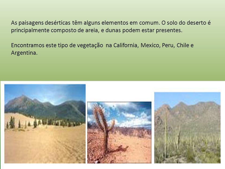As paisagens desérticas têm alguns elementos em comum