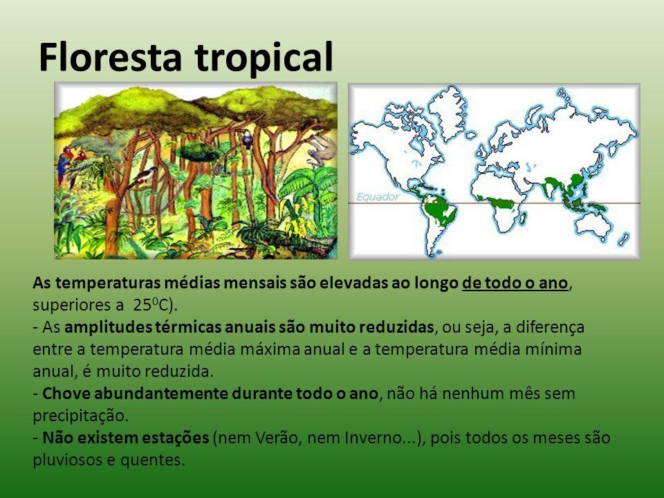 Floresta tropical As temperaturas médias mensais são elevadas ao longo de todo o ano, superiores a 250C).