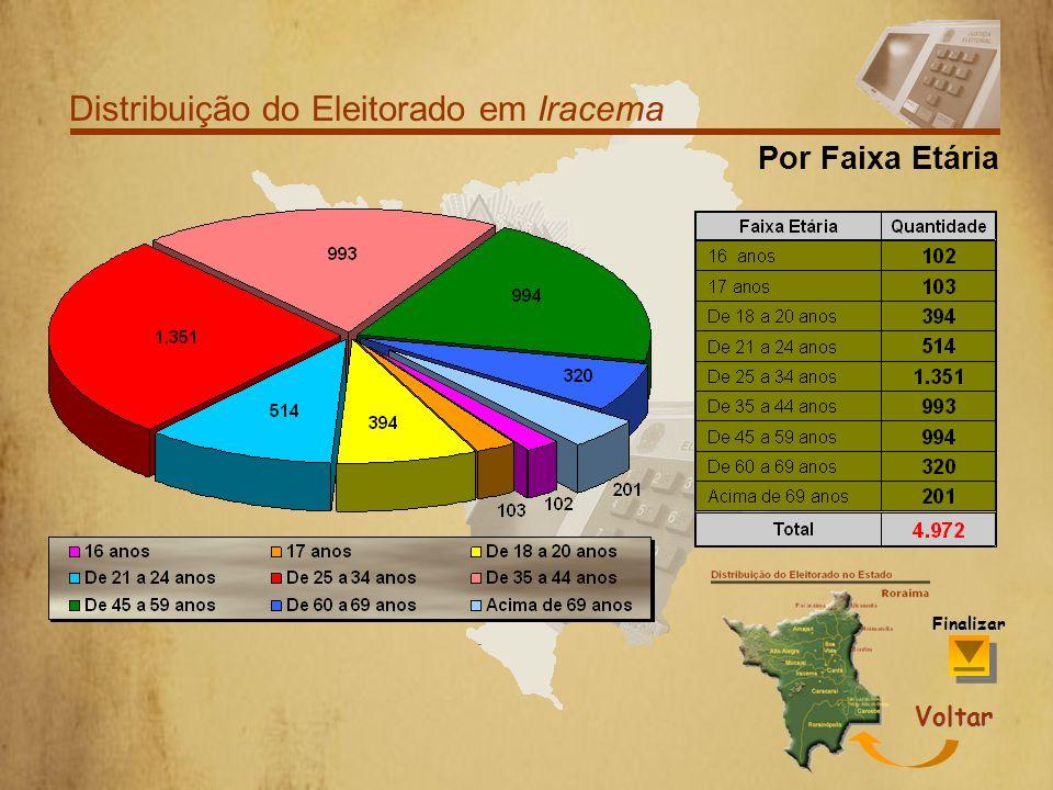 Distribuição do Eleitorado em Iracema