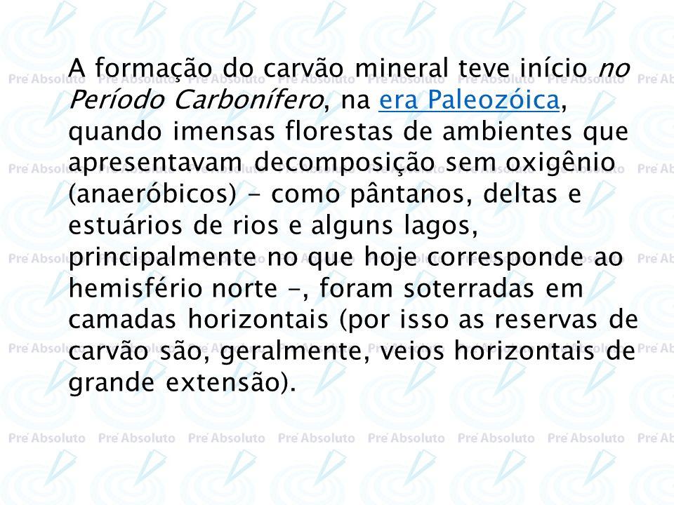A formação do carvão mineral teve início no Período Carbonífero, na era Paleozóica, quando imensas florestas de ambientes que apresentavam decomposição sem oxigênio (anaeróbicos) - como pântanos, deltas e estuários de rios e alguns lagos, principalmente no que hoje corresponde ao hemisfério norte -, foram soterradas em camadas horizontais (por isso as reservas de carvão são, geralmente, veios horizontais de grande extensão).