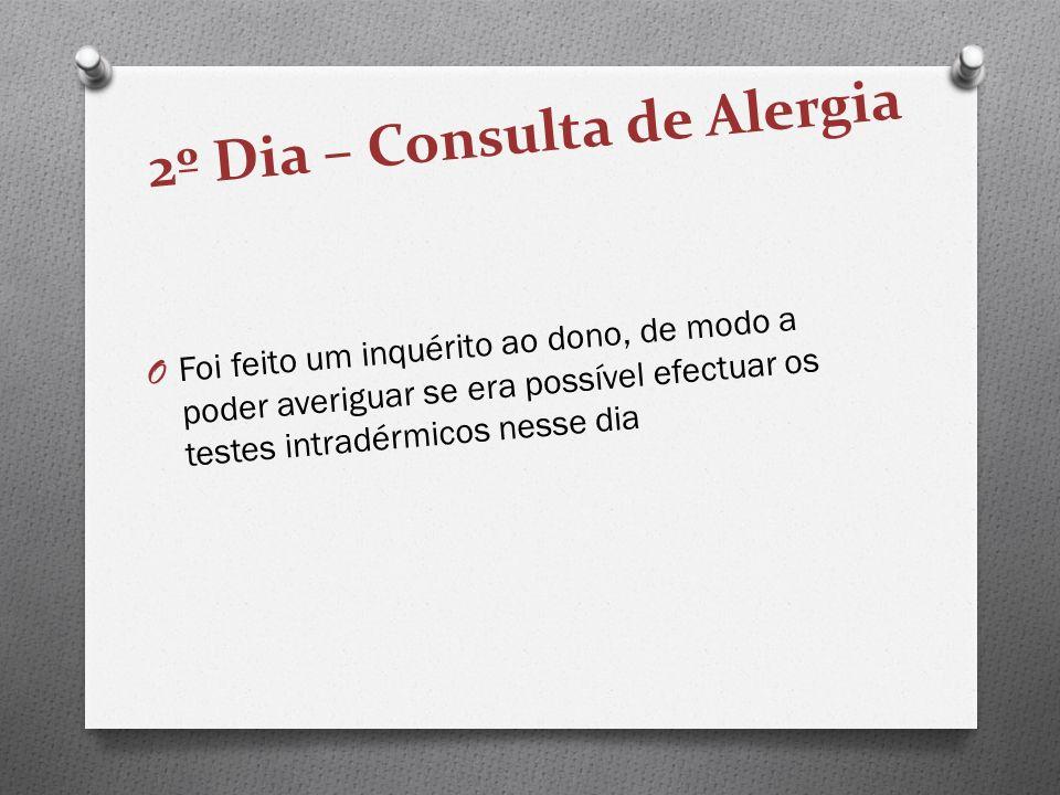 2º Dia – Consulta de Alergia