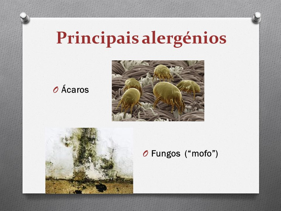 Principais alergénios