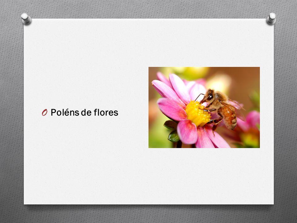 Poléns de flores