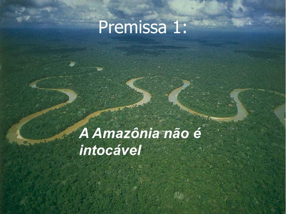 Premissa 1: A Amazônia não é intocável 2