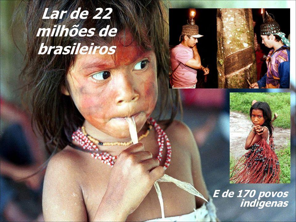 Lar de 22 milhões de brasileiros