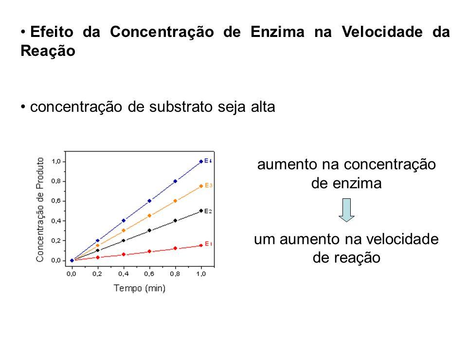 Efeito da Concentração de Enzima na Velocidade da Reação