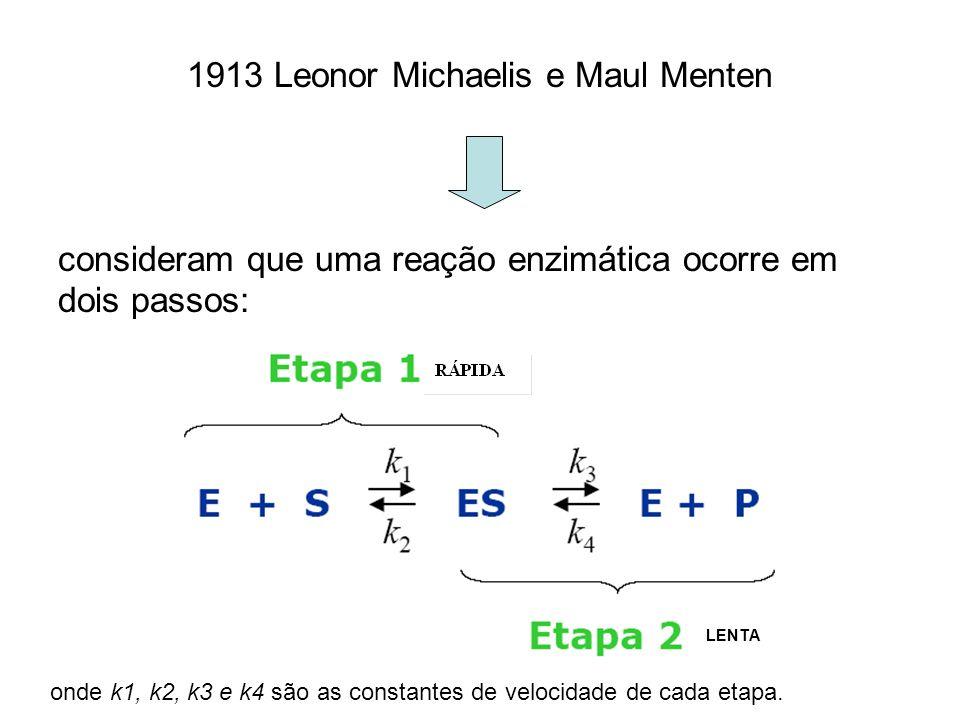 1913 Leonor Michaelis e Maul Menten