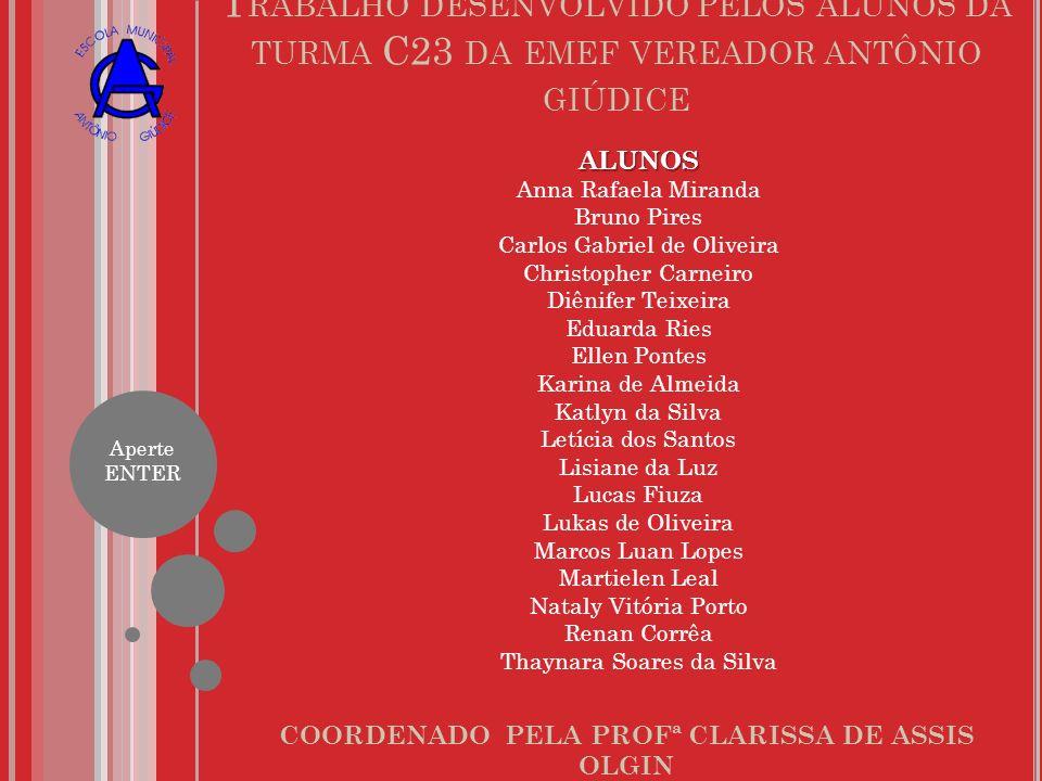 COORDENADO PELA PROFª CLARISSA DE ASSIS OLGIN