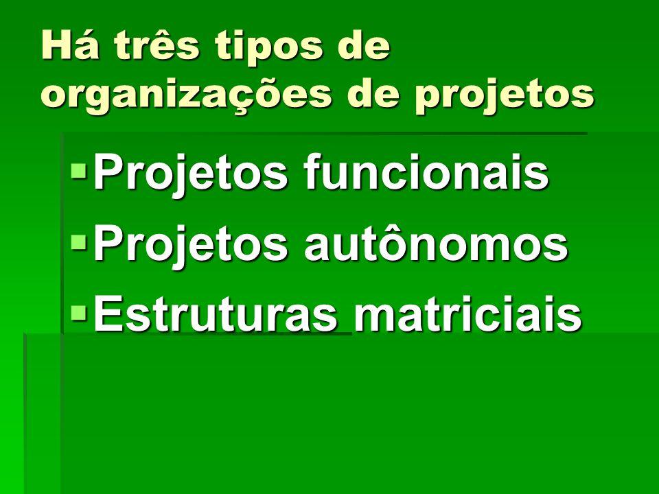 Há três tipos de organizações de projetos
