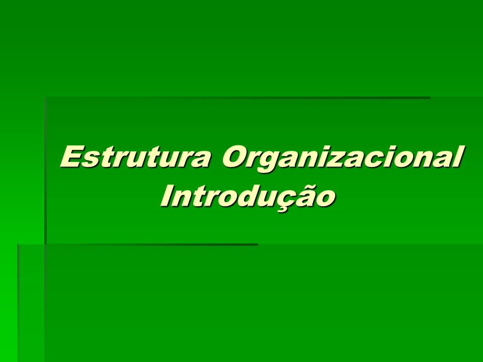 Estrutura Organizacional Introdução