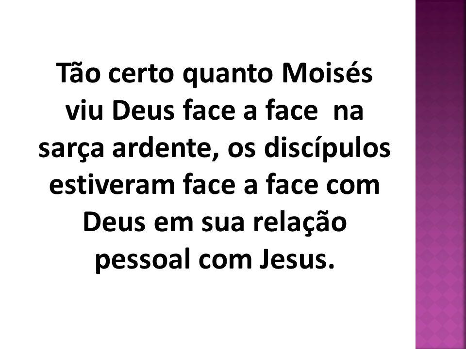 Tão certo quanto Moisés viu Deus face a face na sarça ardente, os discípulos estiveram face a face com Deus em sua relação pessoal com Jesus.