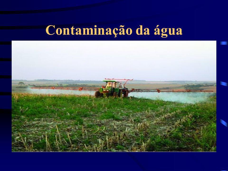 Contaminação da água