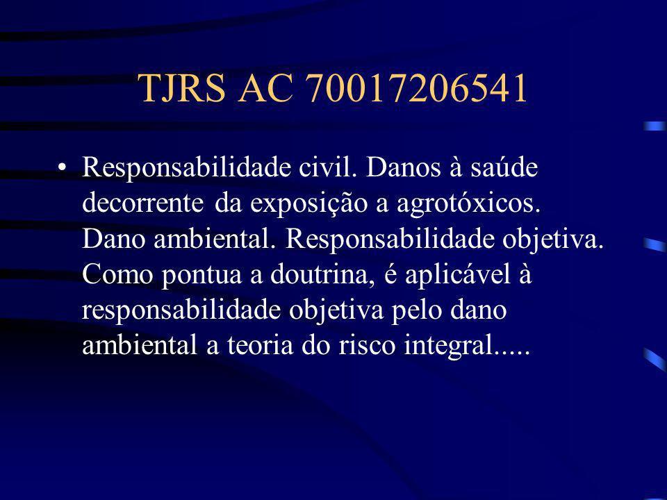 TJRS AC 70017206541