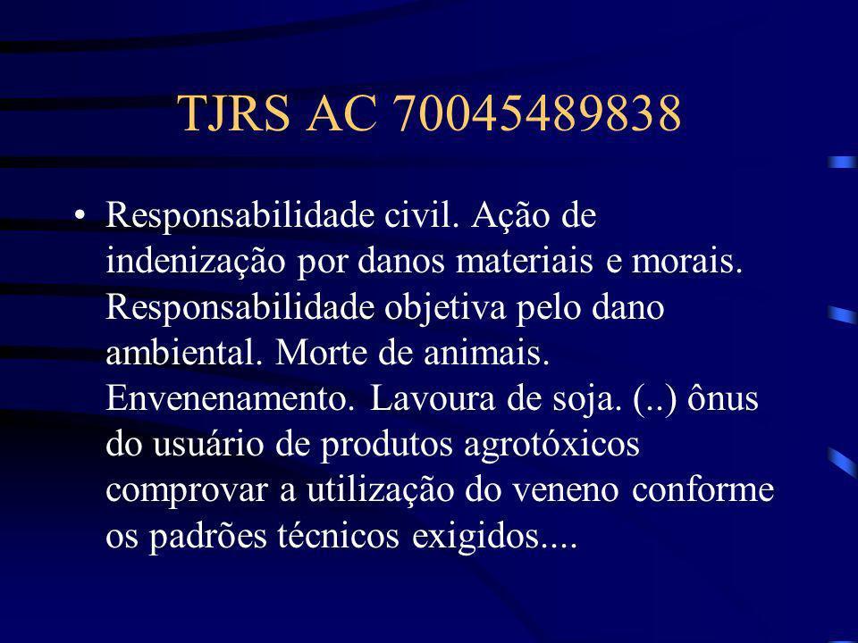 TJRS AC 70045489838