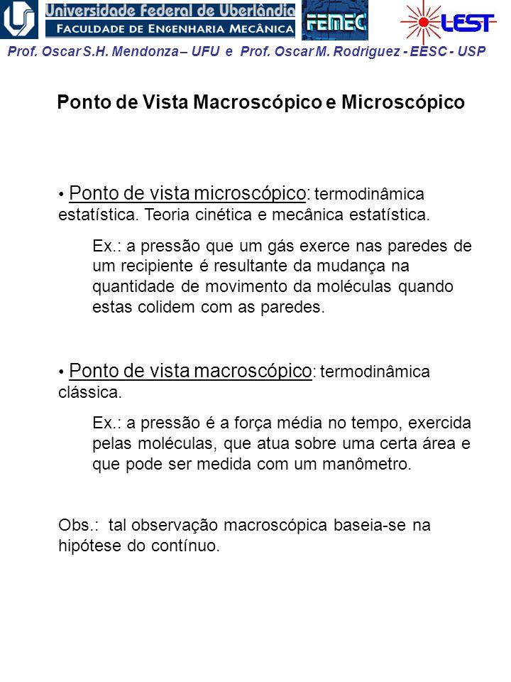 Ponto de Vista Macroscópico e Microscópico