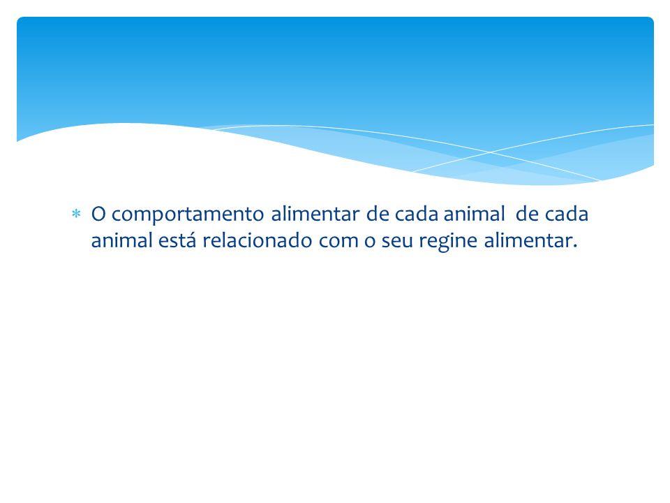 O comportamento alimentar de cada animal de cada animal está relacionado com o seu regine alimentar.