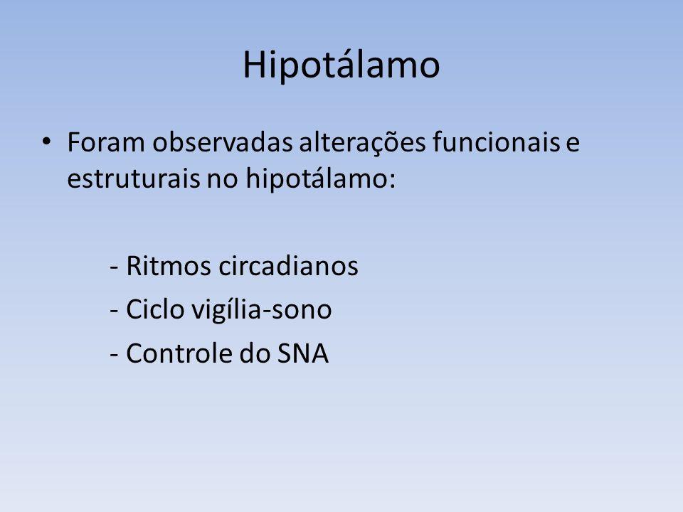 Hipotálamo Foram observadas alterações funcionais e estruturais no hipotálamo: - Ritmos circadianos.