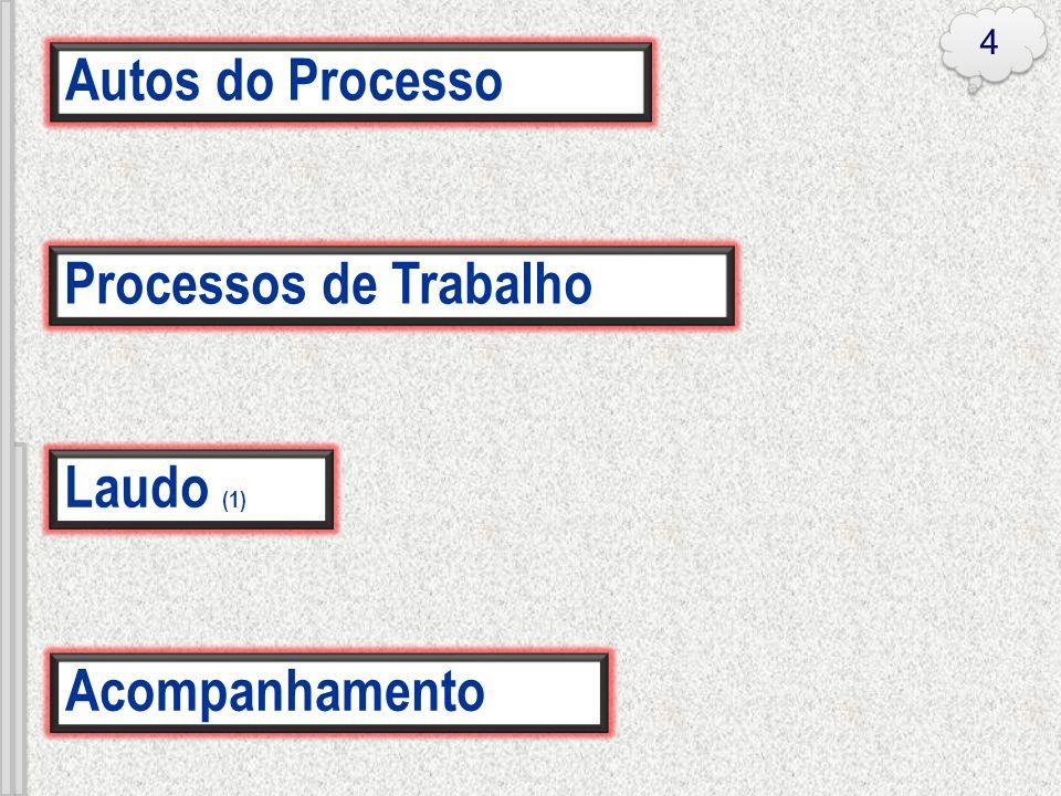 4 Autos do Processo Processos de Trabalho Laudo (1) Acompanhamento