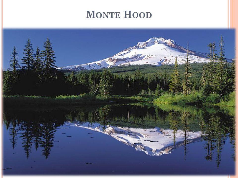 Monte Hood