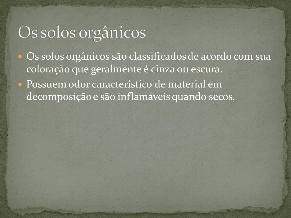 Os solos orgânicos Os solos orgânicos são classificados de acordo com sua coloração que geralmente é cinza ou escura.