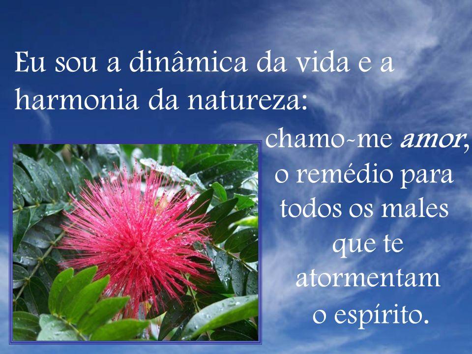 Eu sou a dinâmica da vida e a harmonia da natureza: chamo-me amor,