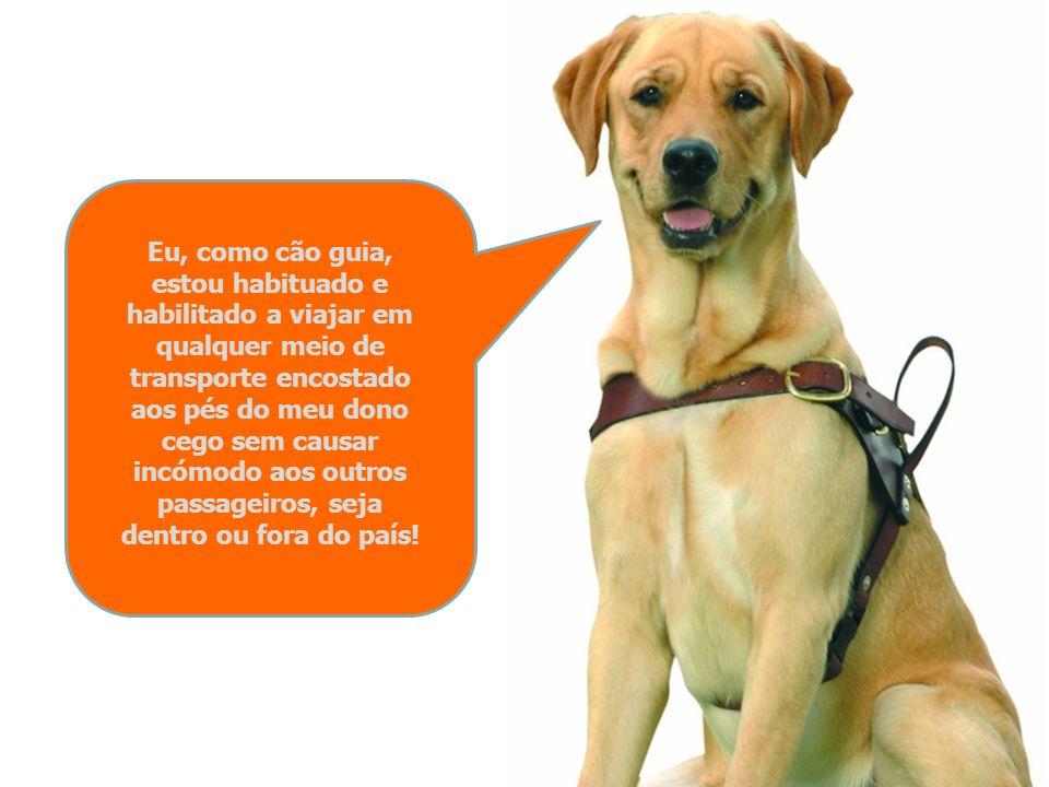 Eu, como cão guia, estou habituado e habilitado a viajar em qualquer meio de transporte encostado aos pés do meu dono cego sem causar incómodo aos outros passageiros, seja dentro ou fora do país!