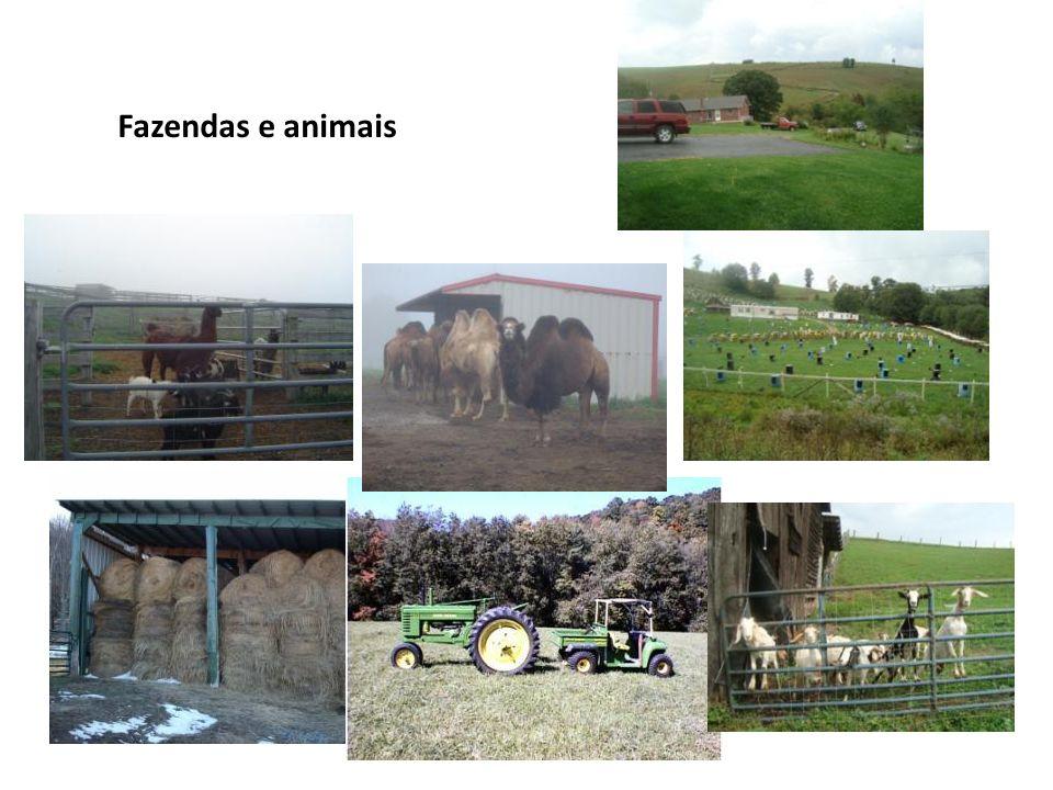 Fazendas e animais