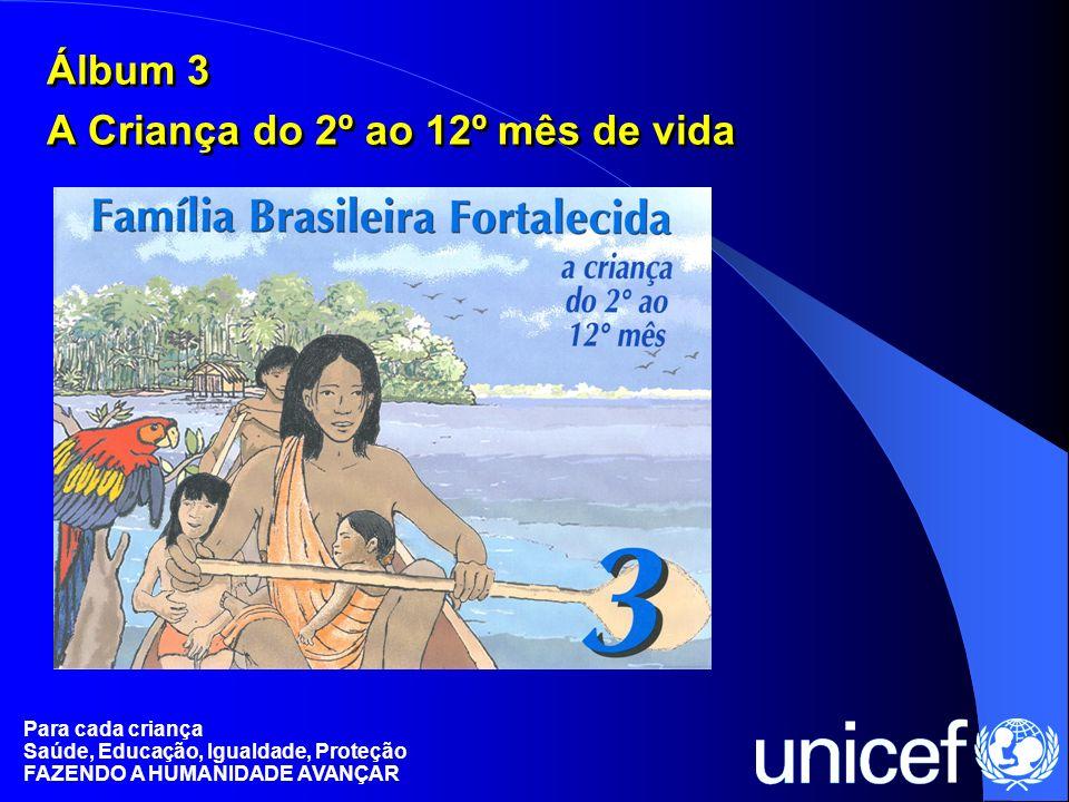 Álbum 3 A Criança do 2º ao 12º mês de vida