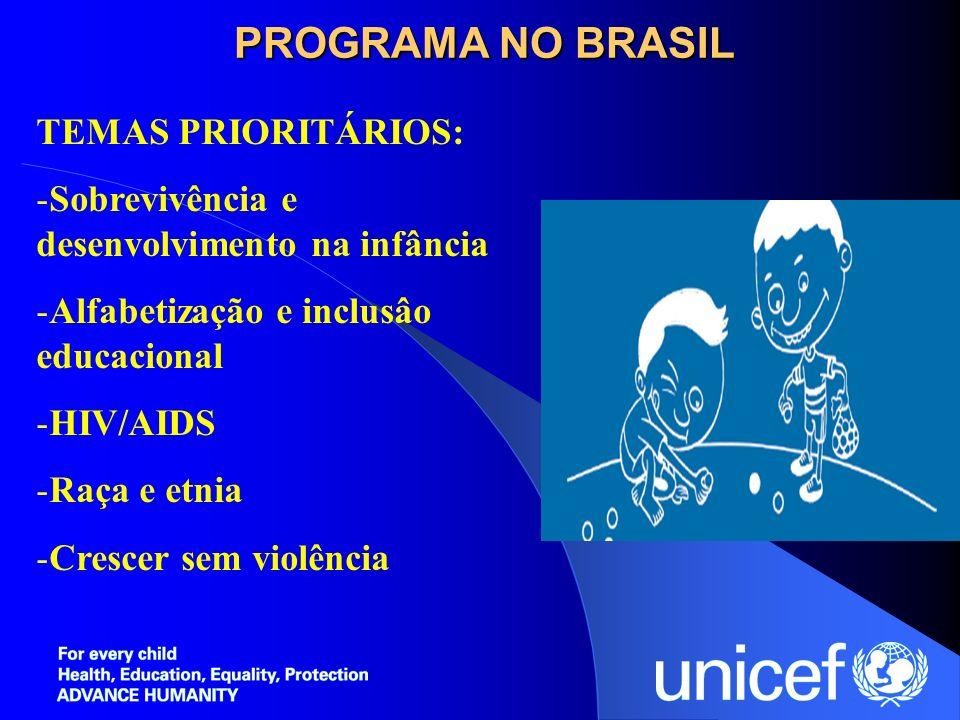 PROGRAMA NO BRASIL TEMAS PRIORITÁRIOS: