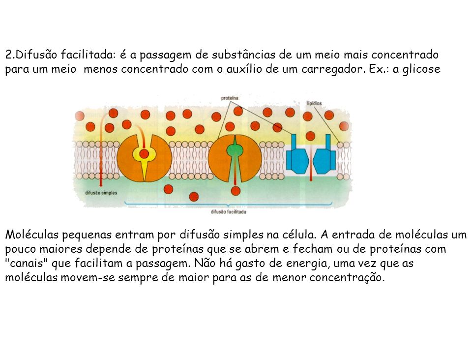 2.Difusão facilitada: é a passagem de substâncias de um meio mais concentrado para um meio menos concentrado com o auxílio de um carregador. Ex.: a glicose