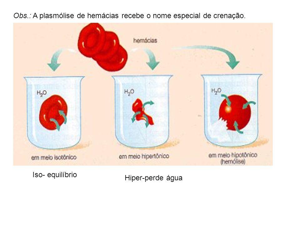 Obs.: A plasmólise de hemácias recebe o nome especial de crenação.