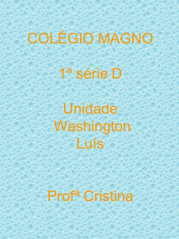 COLÉGIO MAGNO 1ª série D Unidade Washington Luís Profª Cristina