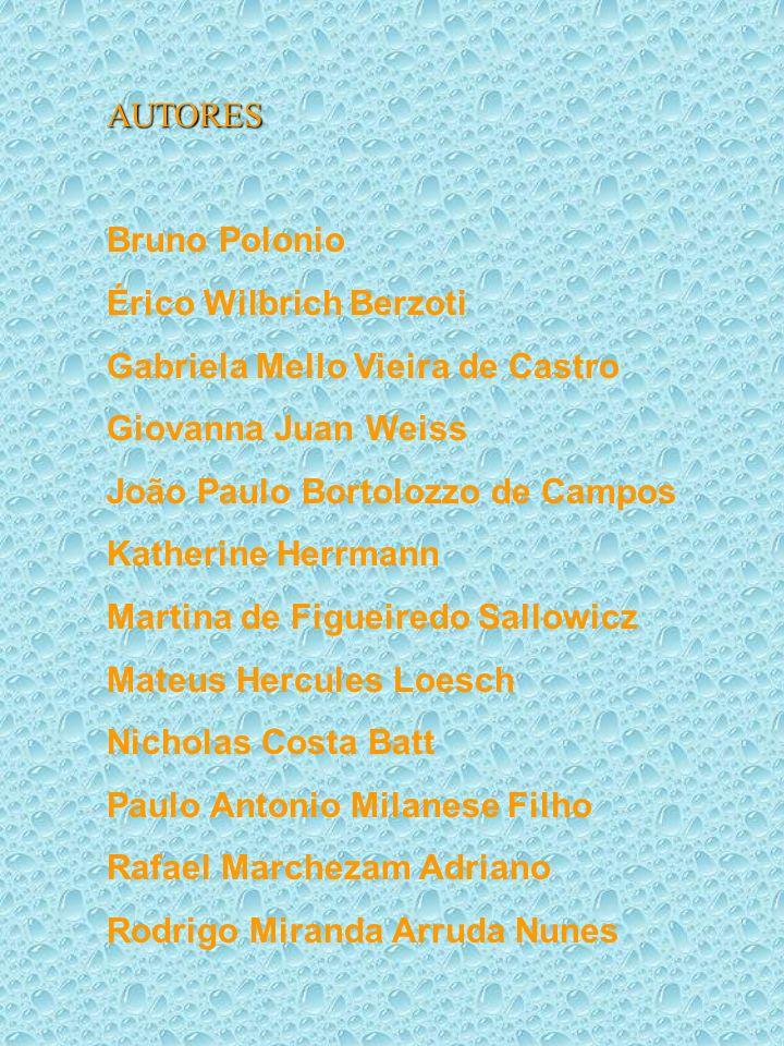 AUTORES Bruno Polonio. Érico Wilbrich Berzoti. Gabriela Mello Vieira de Castro. Giovanna Juan Weiss.