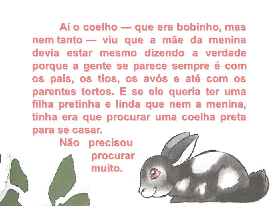 Aí o coelho — que era bobinho, mas nem tanto —