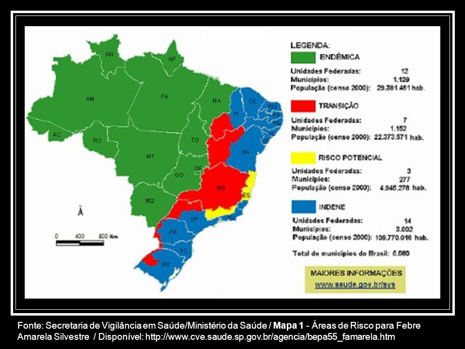 Fonte: Secretaria de Vigilância em Saúde/Ministério da Saúde / Mapa 1 - Áreas de Risco para Febre Amarela Silvestre / Disponível: http://www.cve.saude.sp.gov.br/agencia/bepa55_famarela.htm