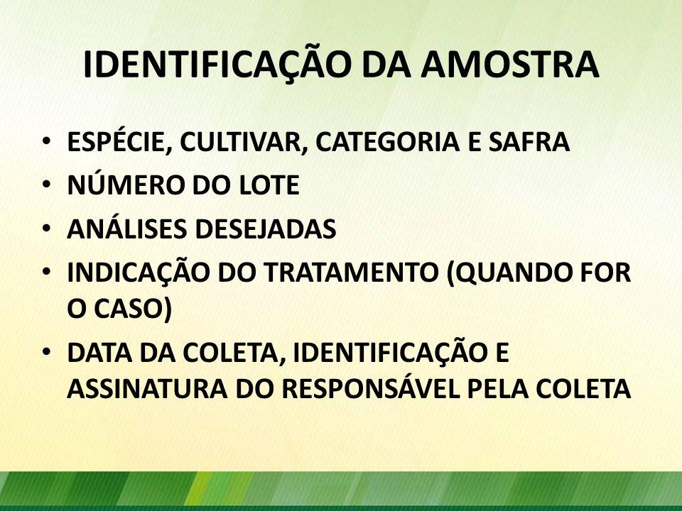 IDENTIFICAÇÃO DA AMOSTRA