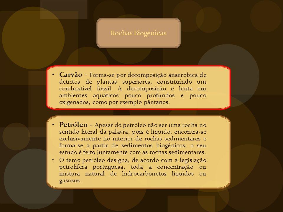 Rochas Biogénicas