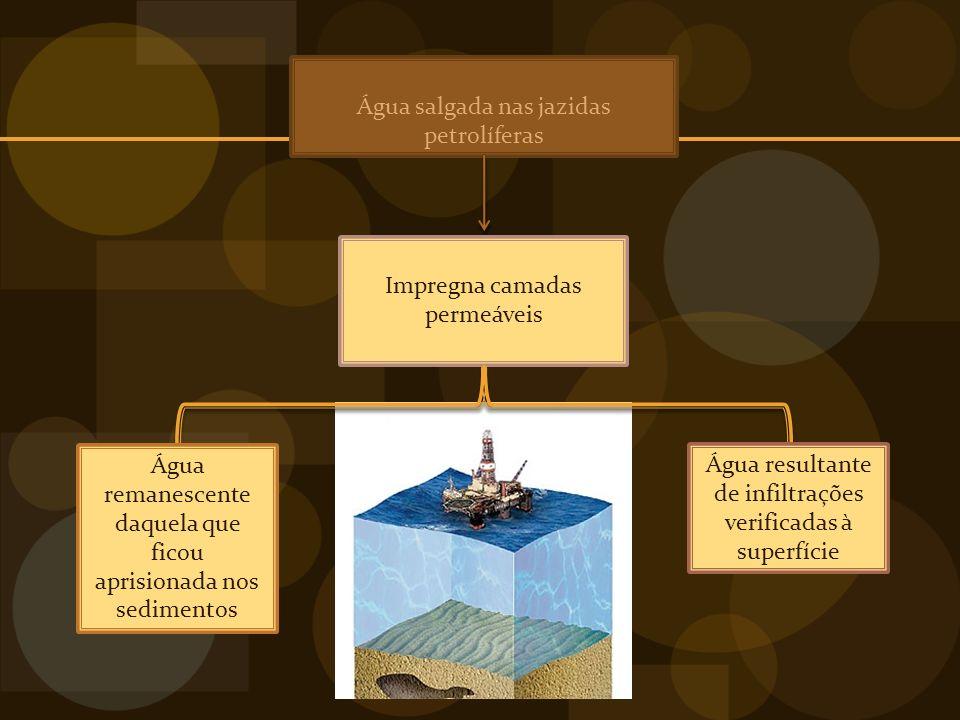 Água salgada nas jazidas petrolíferas