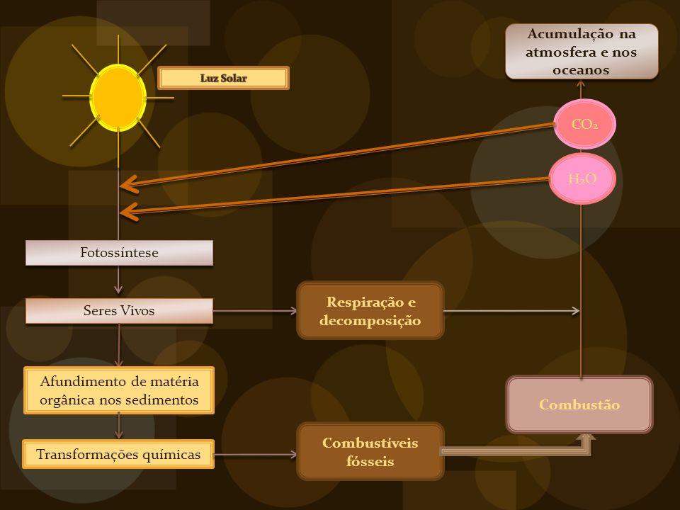 Respiração e decomposição Acumulação na atmosfera e nos oceanos
