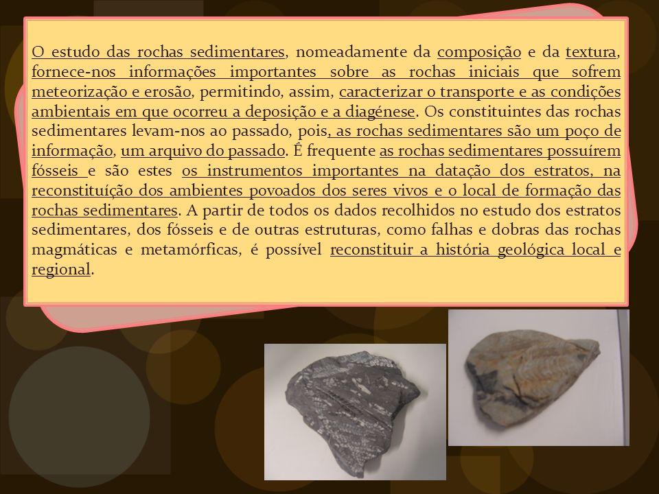 O estudo das rochas sedimentares, nomeadamente da composição e da textura, fornece-nos informações importantes sobre as rochas iniciais que sofrem meteorização e erosão, permitindo, assim, caracterizar o transporte e as condições ambientais em que ocorreu a deposição e a diagénese.